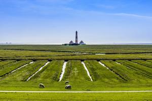 Germany, Schleswig-Holstein, North Frisia, Peninsula Eider (River)Stedt, Westerhever by Udo Siebig