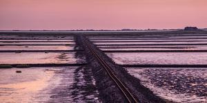 Germany, Schleswig-Holstein, North Frisia, Peninsula North Beach, Hallig Nordstrandischmoor by Udo Siebig