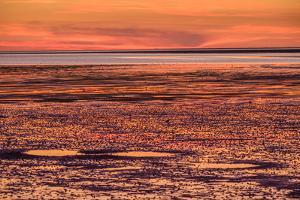 Germany, Schleswig-Holstein, Peninsula North Beach by Udo Siebig