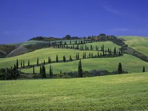 Italy, Tuscany, Siena, Chianciano Terme, Landscape at La Foce by Udo Siebig