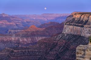 The USA, Arizona, Grand canyon National Park, South Rim, Powell Point, Evening mood, moonrise by Udo Siebig