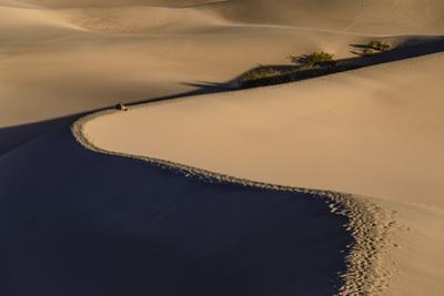 The USA, California, Death Valley National Park, Stovepipe Wells, Mesquite Flat Sand Dunes by Udo Siebig