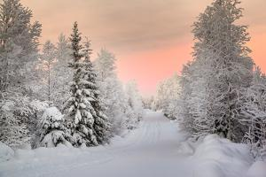 Winter Landscape in Lapland by udvarhazi