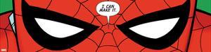 Ultimate Spider-Man Style Guide: Spider-Man