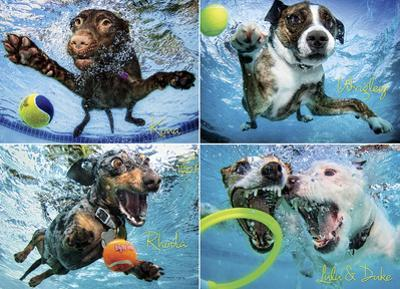 Underwater Dogs 2 1000 Piece Puzzle