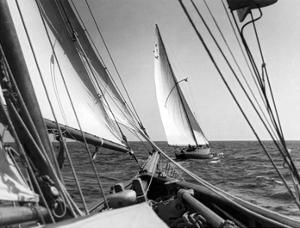 Sail Boats by Underwood