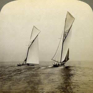 Shamrock I and Shamrock III in a Trial Race Off Sandy Hook, USA by Underwood & Underwood