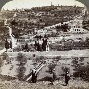 The Garden of Gethsemane and the Mount of Olives, Palestine, 1908 by Underwood & Underwood