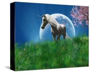 Unicorn in the Field with Moon