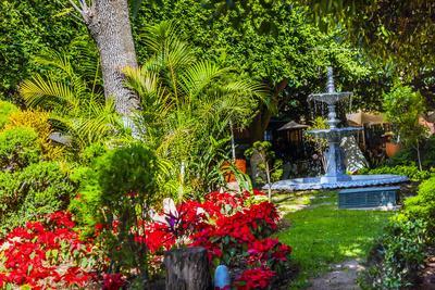 https://imgc.allpostersimages.com/img/posters/union-garden-jardin-fountain-guanajuato-mexico_u-L-Q1D0LRE0.jpg?p=0