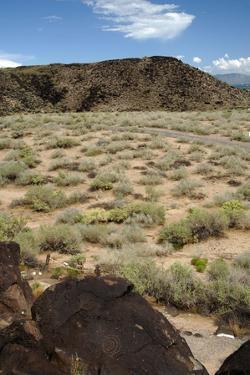 United States, Boca Negra Canyon, Petroglyph National Monument