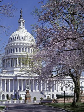 https://imgc.allpostersimages.com/img/posters/united-states-capitol-building-houses-of-congress_u-L-PWBFCK0.jpg?p=0