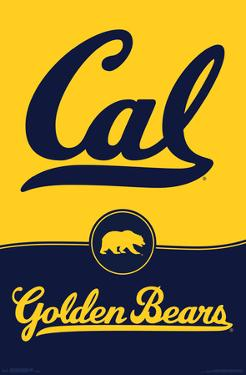 UNIVERSITY OF CALIFORNIA - BERKELEY poster 18
