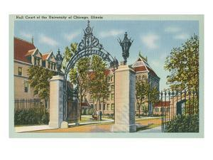 University of Chicago, Illinois