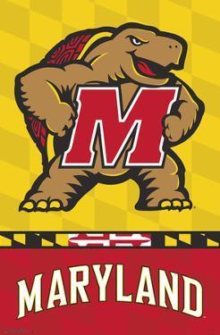 University of Maryland - Logo 19