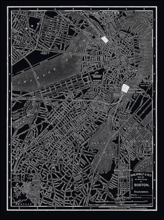 Boston, 1895 by Unknown
