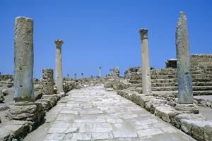 Roman Gymnasium,  c.4th century BC by Unknown