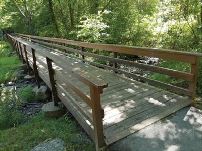 Eddy's Bridge