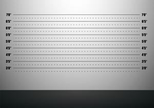 Detailed Illustration Of A Mugshot Background With Inch Scales by unkreatives