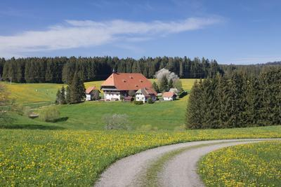 https://imgc.allpostersimages.com/img/posters/unterfallengrundhof-in-the-spring-guetenbach-black-forest-baden-wurttemberg-germany_u-L-Q1EY3VQ0.jpg?artPerspective=n