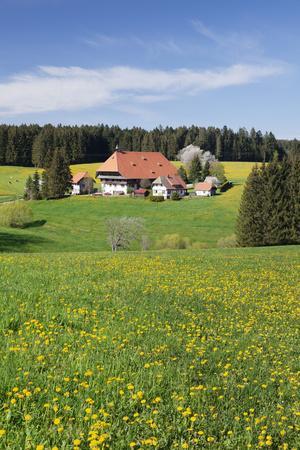 https://imgc.allpostersimages.com/img/posters/unterfallengrundhof-in-the-spring-guetenbach-black-forest-baden-wurttemberg-germany_u-L-Q1EY4G60.jpg?artPerspective=n