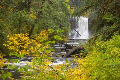 https://imgc.allpostersimages.com/img/posters/upper-north-falls-silver-falls-state-park-oregon-usa_u-L-PN6S6A0.jpg?p=0