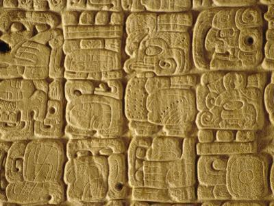 Mayan Carvings on Stela, Tikal, Guatemala, Central America by Upperhall Ltd