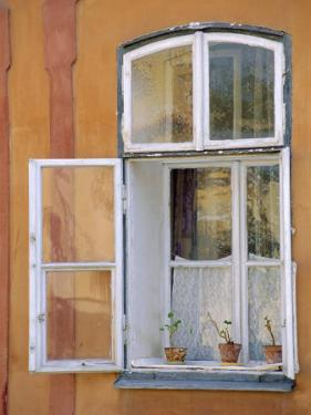 Window and Flower Pots, Tabor, South Bohemia, Czech Republic, Europe by Upperhall Ltd