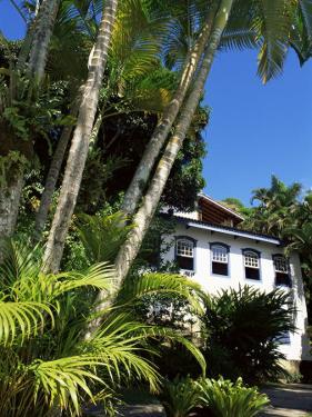Pousada and Palms, Pousada Picinguaba, Costa Verde, South of Rio, Brazil, South America by Upperhall