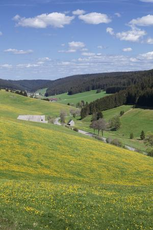 https://imgc.allpostersimages.com/img/posters/urachtal-black-forest-baden-wurttemberg-germany_u-L-Q1EY4TU0.jpg?artPerspective=n