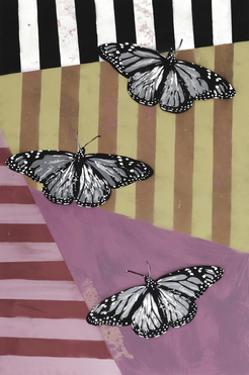 Butterfly - Recolor by Urban Soule