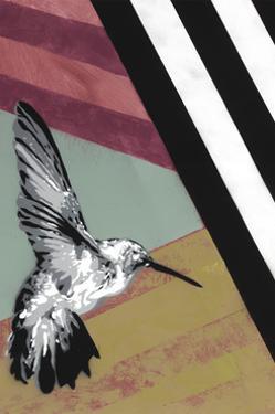 Hummingbird - Recolor by Urban Soule