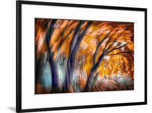Autumn Breeze by Ursula Abresch