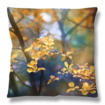 Autumn Leaves by Ursula Abresch