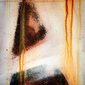 Brown Pine by Ursula Abresch