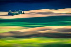 Distance by Ursula Abresch
