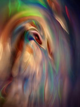 Firebird by Ursula Abresch