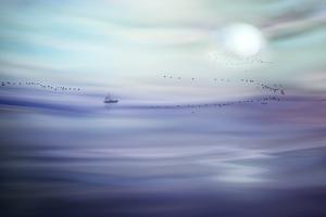 Fishing by Ursula Abresch