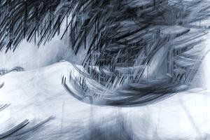 Howling Winter Storm by Ursula Abresch
