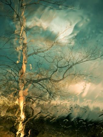 Leaving by Ursula Abresch