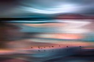 Migrations - Blue Sky by Ursula Abresch