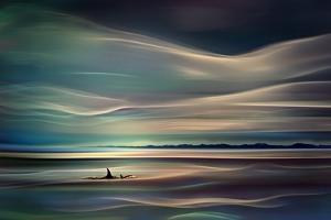 Orcas by Ursula Abresch