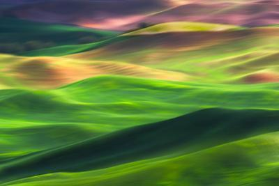 Palouse 1 by Ursula Abresch