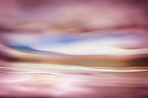 Rose Evening by Ursula Abresch