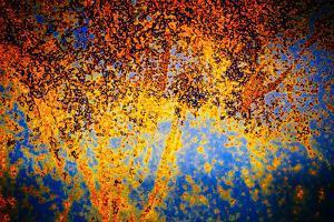 Rusty Fall by Ursula Abresch