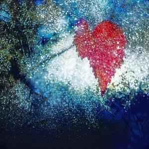 Sparkly Fall by Ursula Abresch