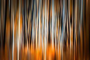 The Burn 2 by Ursula Abresch