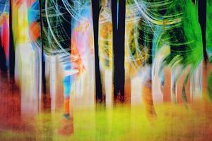 The Grove by Ursula Abresch