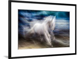 White Beauty by Ursula Abresch