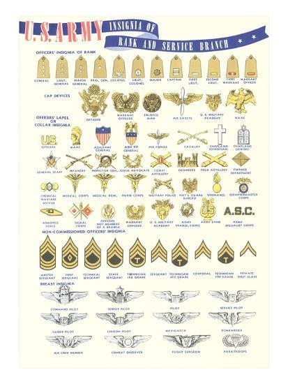 Army insignia us Insignia Depot